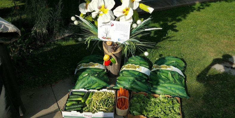Distribution de légumes du 14 août à Victoriaville.